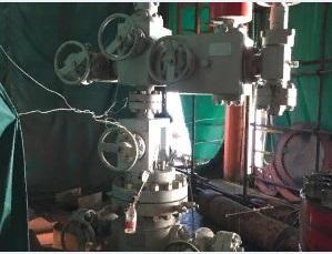 平台用井口装置和采油树 (4)