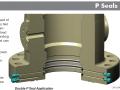 P AND DOUBLE P SEALS TECHNICAL BULLETIN REV1 PORTAL