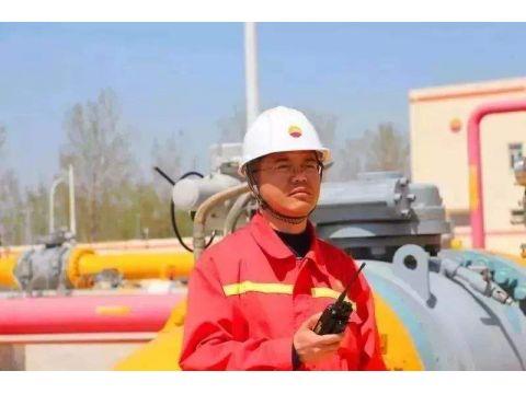 储气库投资效益薄弱,或难完成国家2020年储气目标
