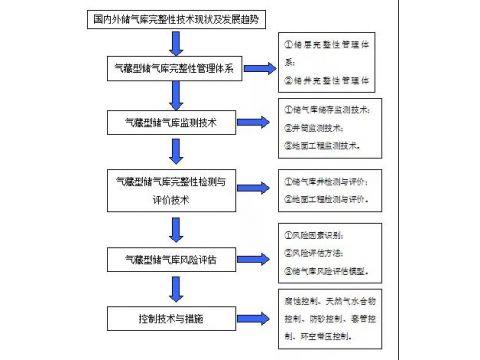 《国内外气藏型储气库完整性管理及相关技术调研报告》