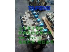 TAIFENG厂家YJ32-315GLCV标准阀组现货
