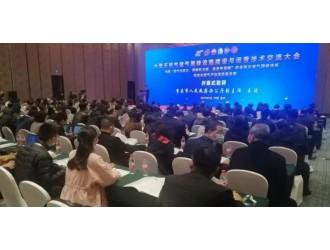 全国天然气储气调峰设施建设与运营技术交流大会在重庆开幕